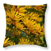 Filled With Sunflowers Horizontal Throw Pillow