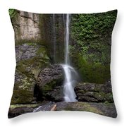 Filmore Glen Throw Pillow