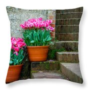 Filoli Tulips Throw Pillow