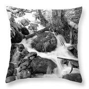 Filter Series 103 Throw Pillow by Jeni Gray