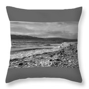 Filter Series 104 Throw Pillow by Jeni Gray
