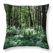 Filtered Forest Sunlight In Oregon Throw Pillow