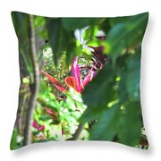 Filtered Red Throw Pillow