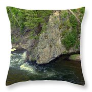 Fin On The Firehole Throw Pillow