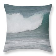 Fin Wave Throw Pillow
