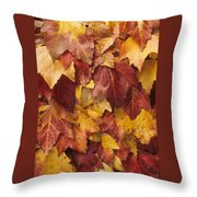 Final Fall In File Throw Pillow