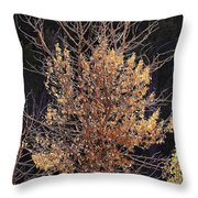 Final Fall Throw Pillow