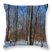 Final Turn Throw Pillow