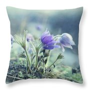 Finally Spring Throw Pillow by Priska Wettstein