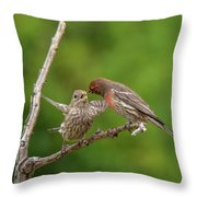 Finch Feeding Time I Throw Pillow