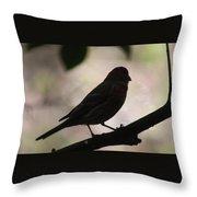Finch Shadow 042814e Throw Pillow