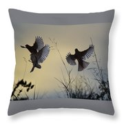 Finches Silhouette With Leaves 6 Throw Pillow