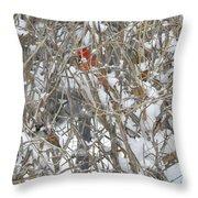 Find The Birds Throw Pillow