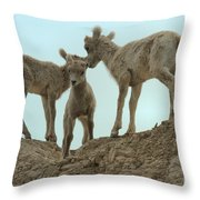 Finding My Own Way Throw Pillow