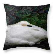 Finding Rest In Nature Throw Pillow