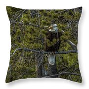 Finding Shelter In Rain Throw Pillow