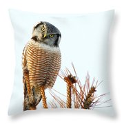 Finding The Balance Throw Pillow
