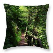Finding The Right Path Throw Pillow
