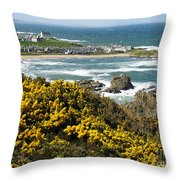 Findochty In Spring Throw Pillow