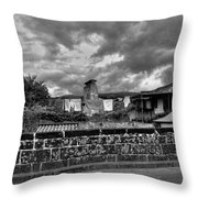 Fine Art Back And White271 Throw Pillow by Joseph Amaral