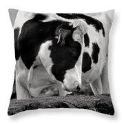 Fine Art Black And White-189 Throw Pillow