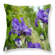 Fine Art Floral Prints Purple Iris Flowers Canvas Irises Baslee Troutman Throw Pillow