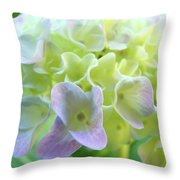 Fine Art Prints Hydrangeas Floral Nature Garden Baslee Troutman Throw Pillow