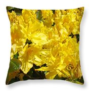 Fine Art Prints Yellow Rhodies Floral Garden Baslee Troutman Throw Pillow