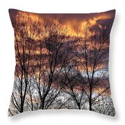 Fine Lines 1 Throw Pillow