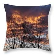Fine Lines 2 Throw Pillow