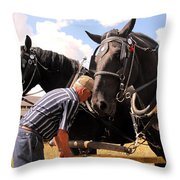 Fine Tuning Throw Pillow