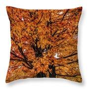 Fine Wine Cafe Golden Tree Throw Pillow