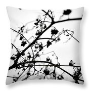Fineart-nature-4 Throw Pillow