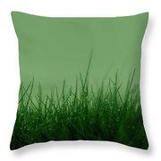 Fineart-nature-5 Throw Pillow