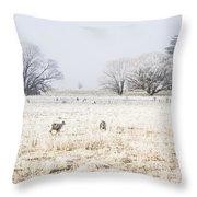 Fingal Winter Farmyard Throw Pillow