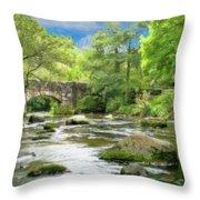 Fingle Bridge - P4a16007 Throw Pillow