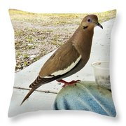 Finish Your Seeds And We'll Go Flying Throw Pillow