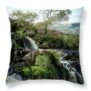 Fintry Loupe Throw Pillow