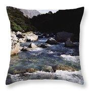 Fiordlands National Park Throw Pillow