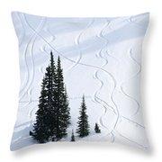 Fir And Snow Throw Pillow