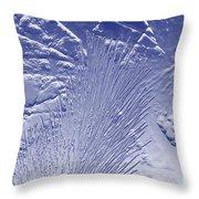 Fir In Blue Throw Pillow