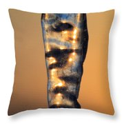 Fire And Ice 8 Throw Pillow