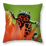 Fire-bellied Toad Throw Pillow