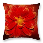 Fire Dahlia By Kaye Menner Throw Pillow