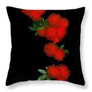 Fire In Bloom 1.1 Throw Pillow
