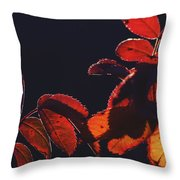 Fire In Hands  Throw Pillow