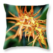 Fire Orchid Throw Pillow