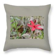 Fire Pink Throw Pillow