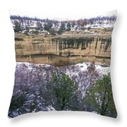 Fire Temple And New Fire House Ruins Throw Pillow
