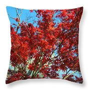 Fire Tree I Throw Pillow